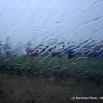 ACDC-Freitag-(c)_bernhard_Plank-2